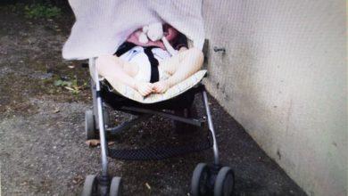Photo of Užas u Pančevu ukradena  kolica od bebe